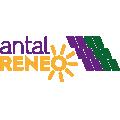 Reneo - Leasing zespołów na potrzeby projektów PV
